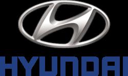 Hyundai EV Car Charger for Homes